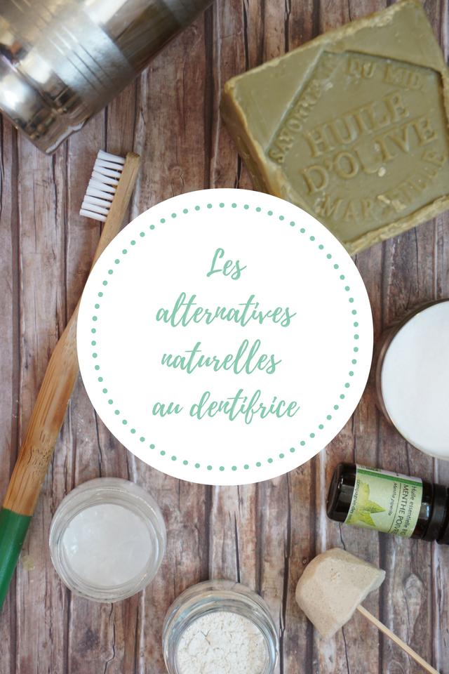 Zoom sur les alternatives naturelles au dentifrice