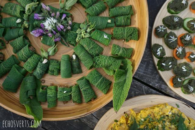 Reconnaissance et cuisine des plantes sauvages mon stage la ferme du bec hellouin - Cuisine plantes sauvages ...